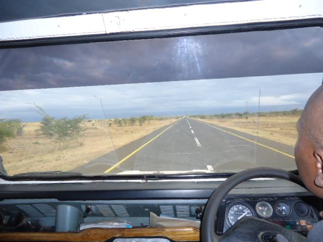 タンザニア ディフェンダー