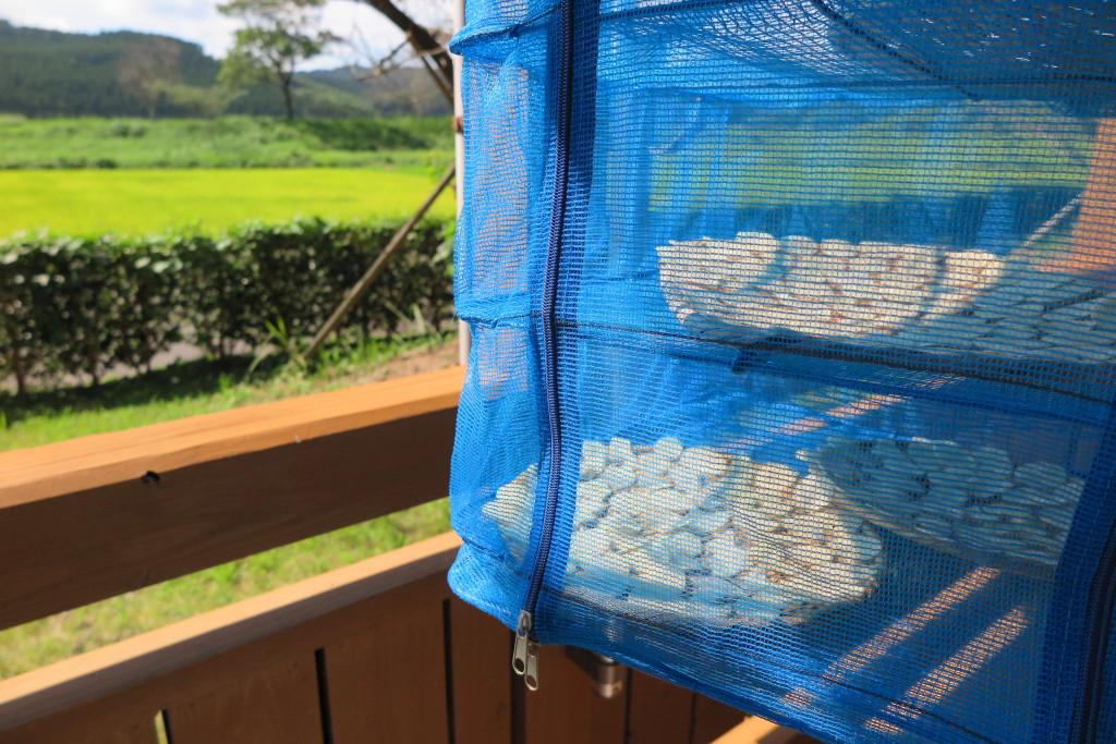 有機生姜保存方法 干し網