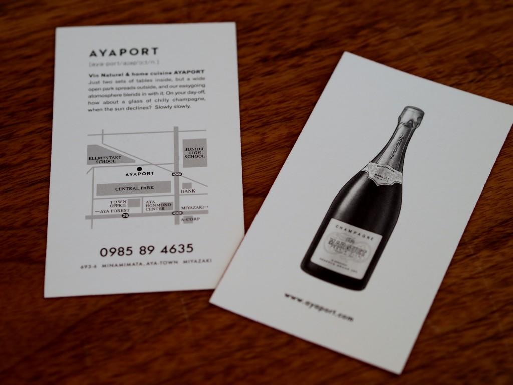 ayaport card