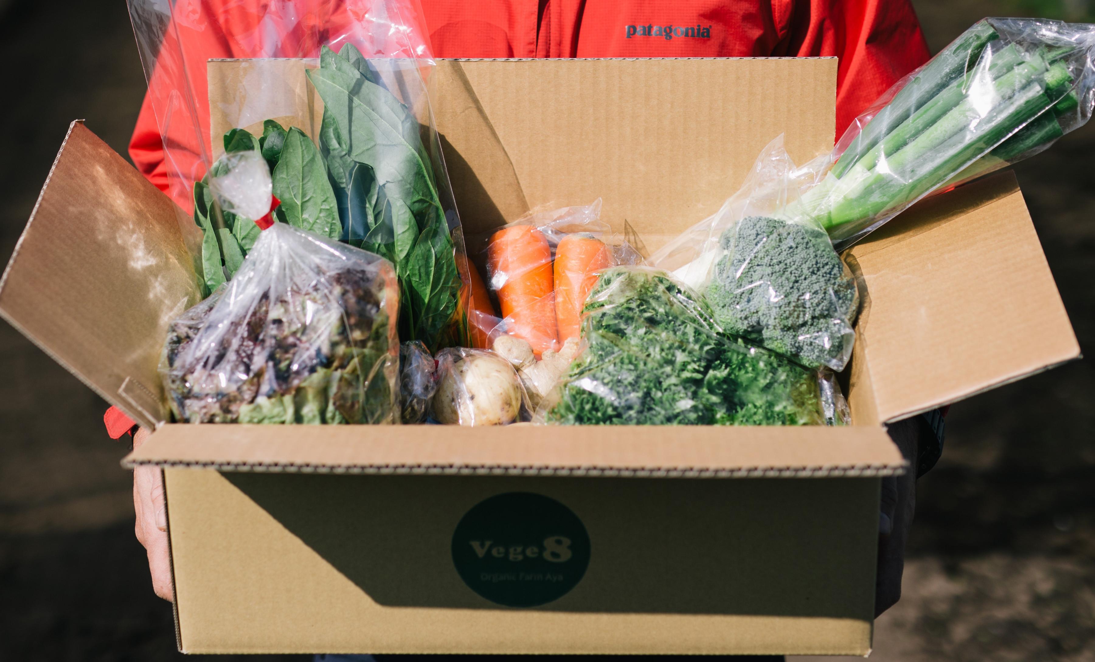 無農薬野菜セット Vege8
