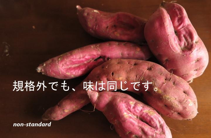 有機野菜セット  さつまいも